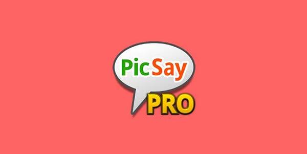 Download PicSay pro APK